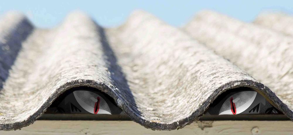 asbestbeest-HR