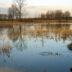 Overstroming in de Demerbroeken