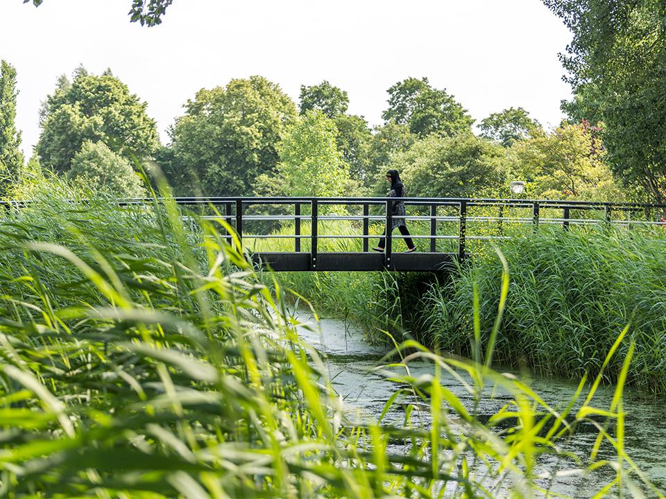 standaard brug, Lelystad