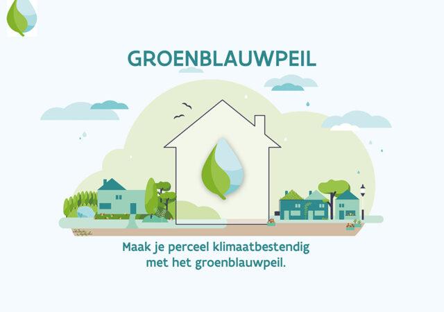 groenblauwpeil_-kopiëren